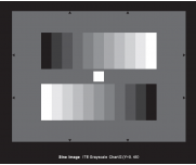 灰度测试卡测试噪声/动态范围/对比度/曝光的准确性镜头眩光