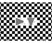 ESSER爱莎棋盘测试图测试几何失真分辨率卡的均匀性