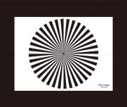 镜头焦距测试图36个扇形西门子之星分辨率卡