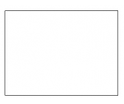 100% WHITE TEST CHART